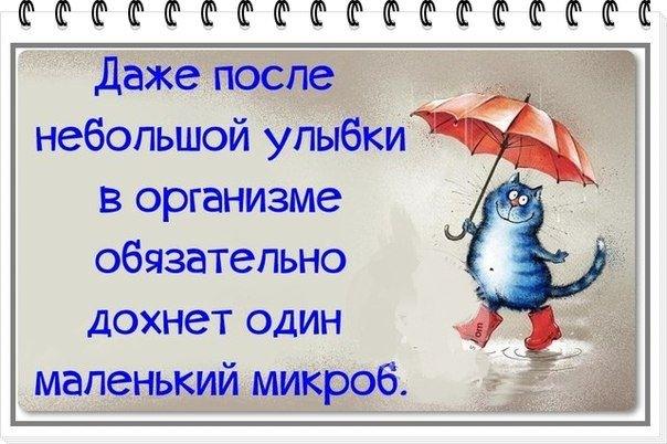 http://data16.i.gallery.ru/albums/gallery/140874-5fb0b-82076863-m750x740-u8f746.jpg
