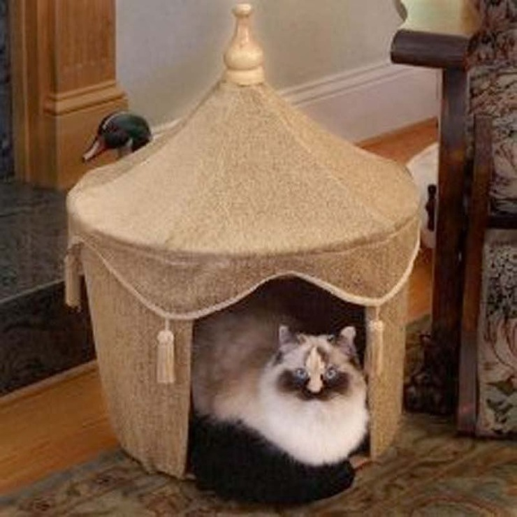 Домик для котят фото