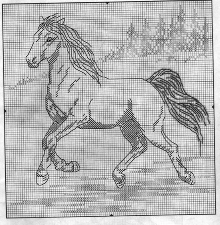 Вышивка крестом лошадь черно белая