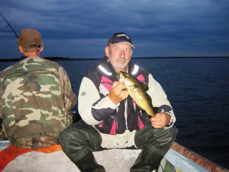 отчеты о рыбалке на белом море